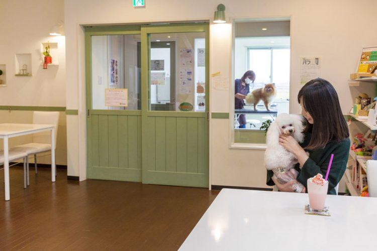 Dog Salon&Cafe chienka(シアンカ)