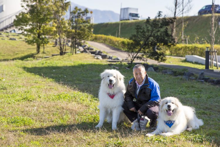 うわさの看板犬&猫に会えちゃう! 動物好きにはたまらない 福井県内のお店あれこれ。