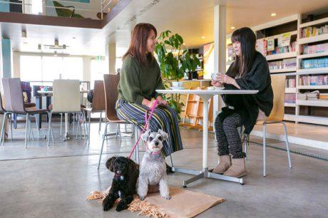 愛犬と一緒にくつろげる♪ ペットOKの福井のカフェ5選。