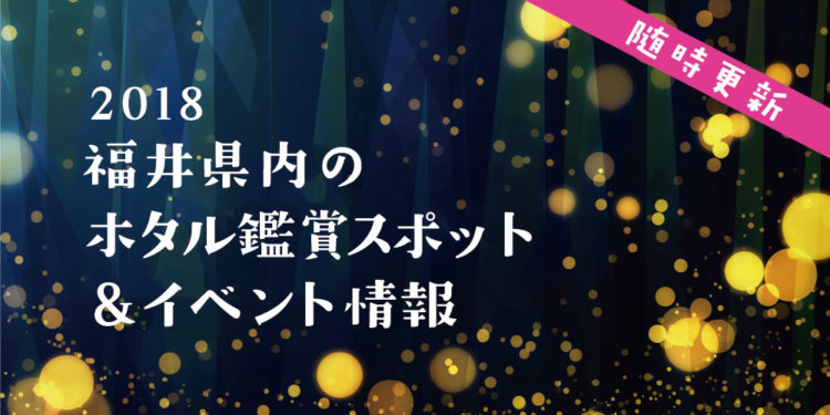 ここでホタルに会える! 2018年 福井県内のホタル鑑賞スポット&イベント情報【随時更新】