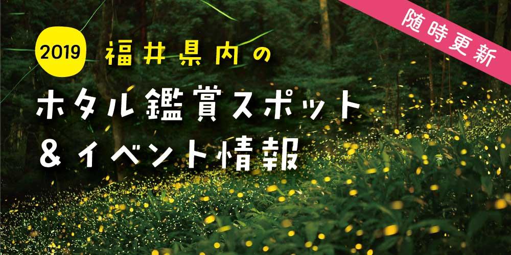 ここでホタルに会える! 2019年 福井県内のホタル鑑賞スポット&イベント情報【随時更新】