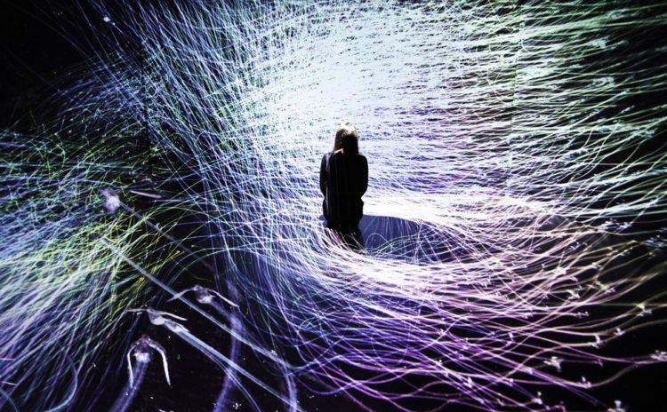 世界的人気の「チームラボ」のデジタルアートが、永平寺町「えい坊館」で体験できる!
