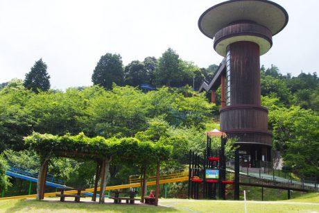 おおい町の「きのこの森」は、大人も楽しいコスパ抜群の遊び場です!【2020年版】