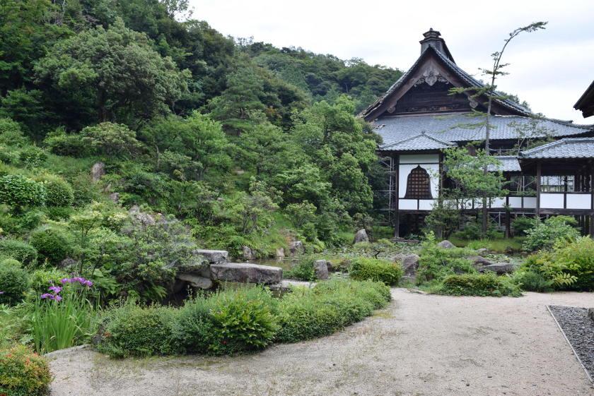 国指定名勝! 西福寺(敦賀市)庭園のヒーリングパワーがスゴかった。