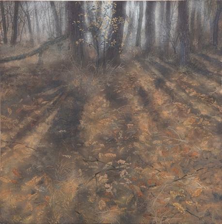 金津創作の森 開館20周年記念 福井の院展作家 土屋圀代展―現代美術から日本画へ