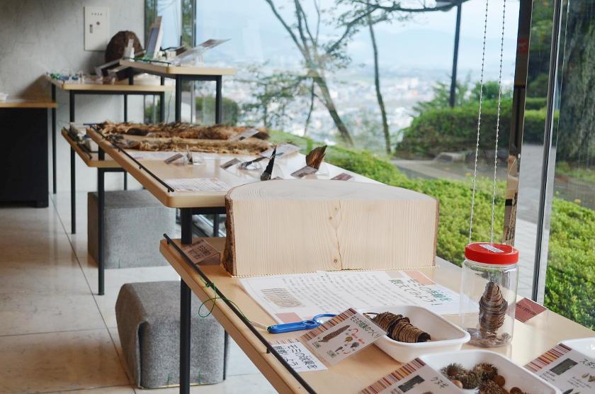 福井市自然史博物館 サブ画像