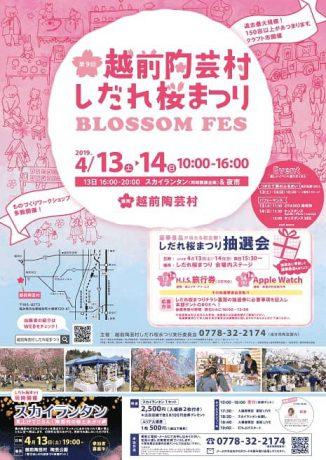 第9回越前陶芸村しだれ桜まつり BLOSSOM FES