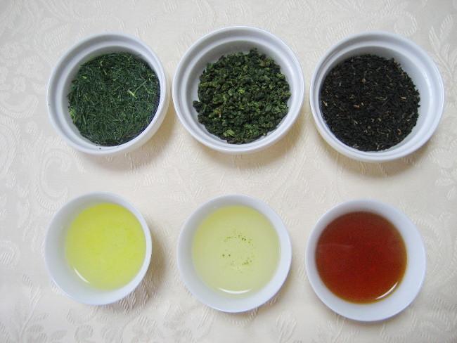 第1回「日本茶入門」 ~知ると楽しい日本茶ことはじめ~