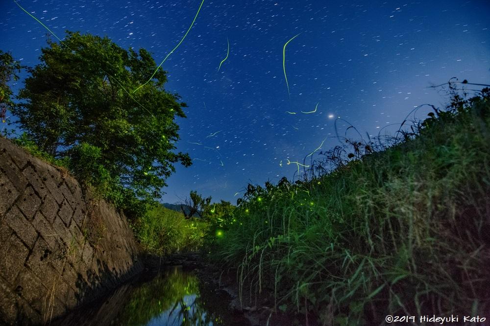 ホタルと星空の共演! 福井県吉田郡永平寺町の吉野地区で星空を見てきました!【ふくい星空写真館】
