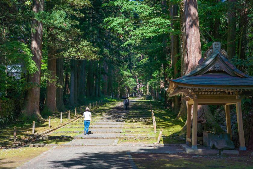 福井県内のおすすめウォーキングコース6選。ランニングにもぴったりですよ!