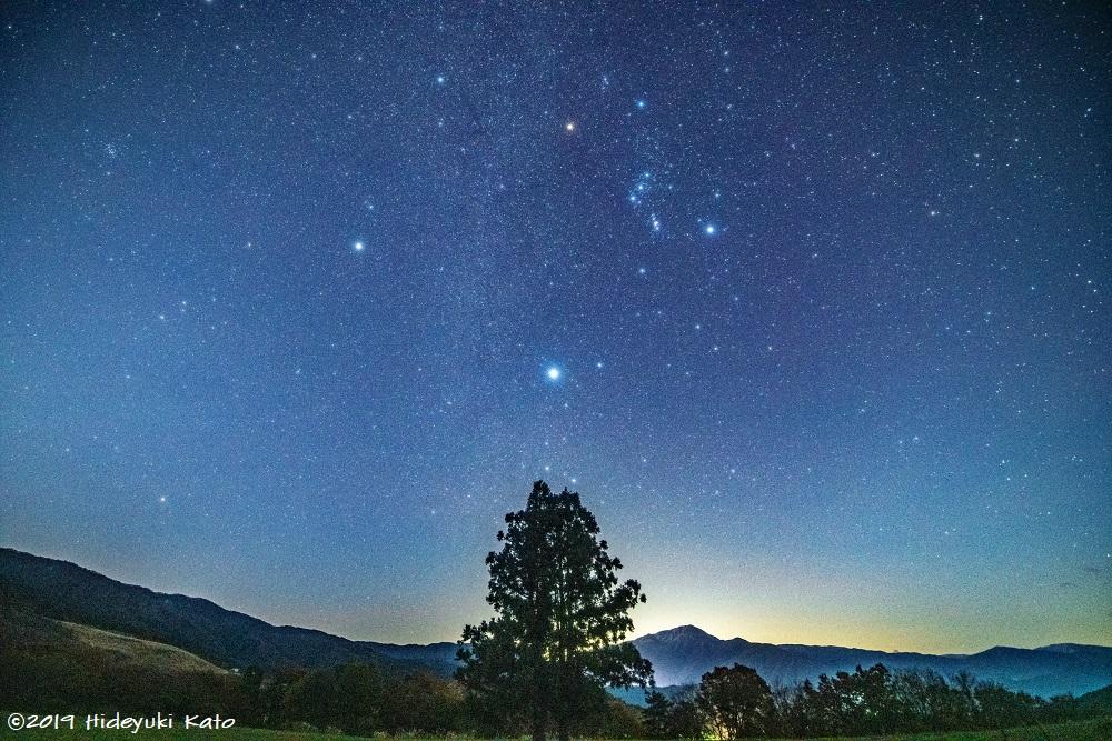 まるでクリスマスツリーの星!?勝山市の池ヶ原湿原周辺で星を見てきました!【ふくい星空写真館】