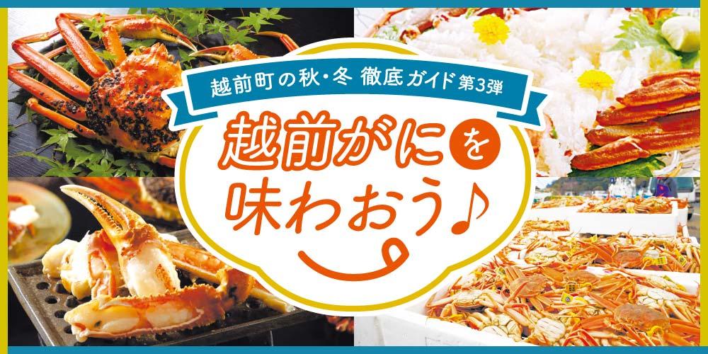冬の味覚の王様「越前がに」を福井県越前町で楽しんで♪ 美味しいカニの選び方、食べ方とは。~越前町の秋・冬徹底ガイド part3~
