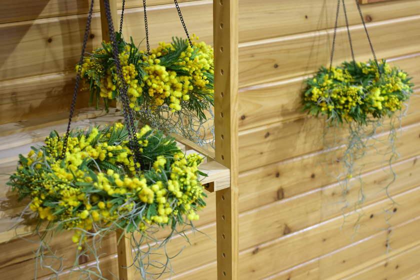 """越前市の花屋「LANTEN by flower」の""""六ケ月教室""""で、花のある暮らしを楽しもう。ただいま第三期生募集中!"""
