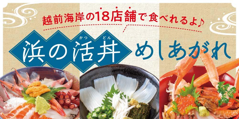 活きのいい丼、召し上がれ!新鮮な海の幸がたっぷりの『浜の活丼』を食べに行こう!