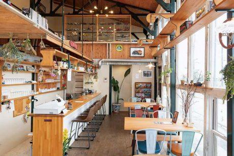 福井県内にここ最近オープンした4店を紹介します! ~GINCHIYO (ギンチヨ)、PICK UP BAR&CAFE (ピックアップバー&カフェ)、B cafe(ビーカフェ)、クイーン~