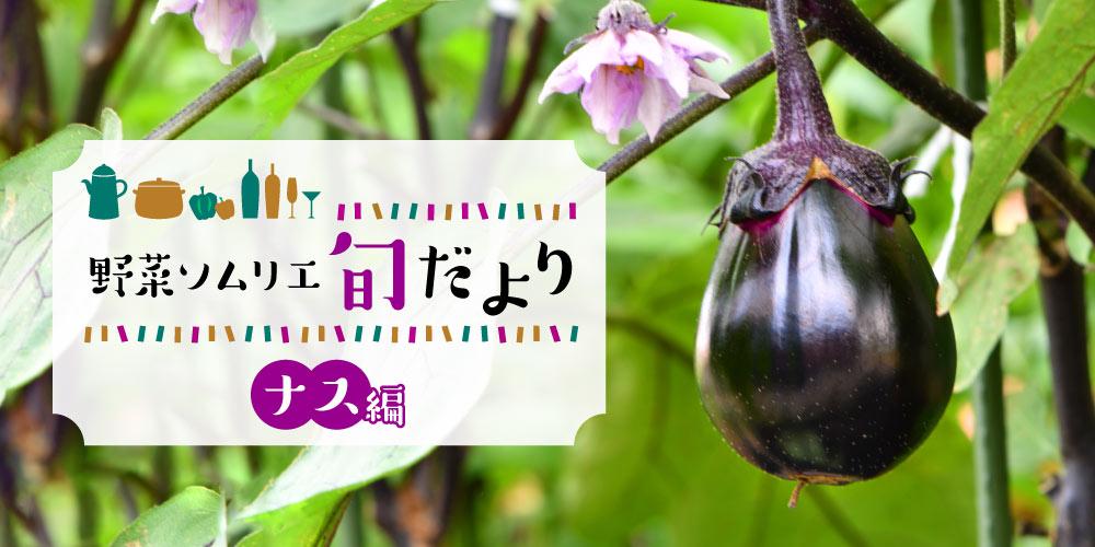 焼いて、煮込んでトロっと美味しい♪ 福井のナス&おすすめレシピをご紹介!【野菜ソムリエ旬だより】
