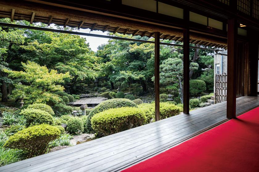 福井県内の美しい庭のあるお寺4選。心をととのえたくなる、訪れるべき名庭。