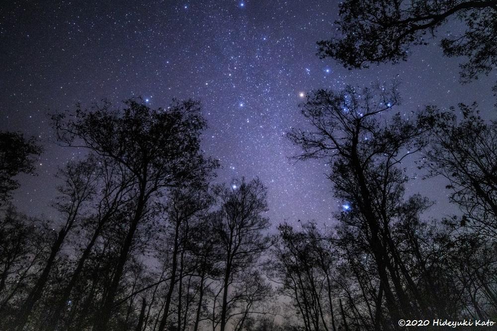 息をのむ美しい星空! 敦賀市の池河内湿原で星を見てきました!【ふくい星空写真館】