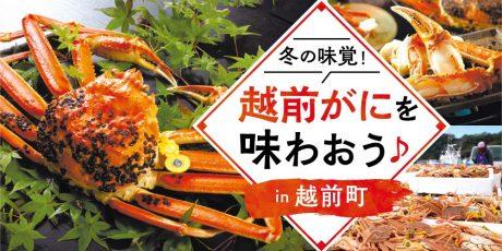 冬の味覚の王様「越前がに」を福井県越前町で味わおう♪ 美味しいカニの選び方、食べ方もご紹介!