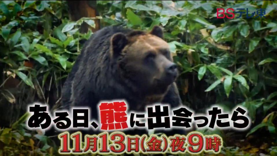 モーニングショーでも使われた「クマ疾走動画」が、本日11月13日(金)に放送されるBSテレ東「ある日、熊に出会ったら~もしもの時の危機回避術~」で流れます!【ちょいネタ】