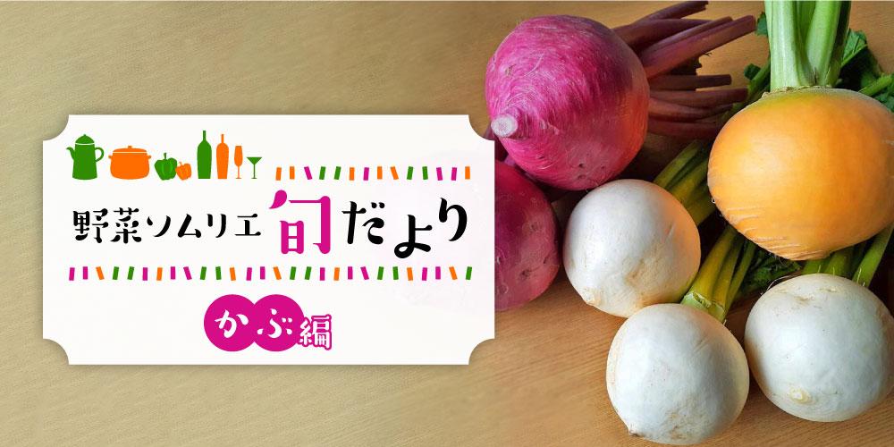 冬に美味しさがアップするふくいの「かぶ」の魅力を紹介! 【野菜ソムリエ旬だより】