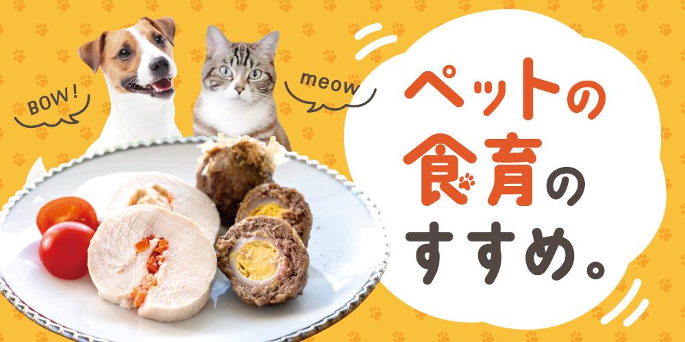 ペットの食育のすすめ。犬も猫も食べられる、手作りごはんレシピもご紹介♪