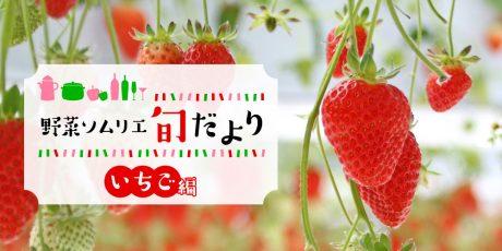 あま~くて美味しい旬の到来♪「いちご」のアレコレを紹介! 【野菜ソムリエ旬だより】