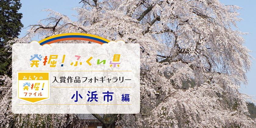 【発表♪ みんなの発掘ファイル】小浜市のおすすめスポットを写真で紹介。次回は越前町の写真を募集中! ~発掘!ふくい県~