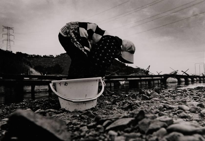 写真家 水谷内健次の軌跡