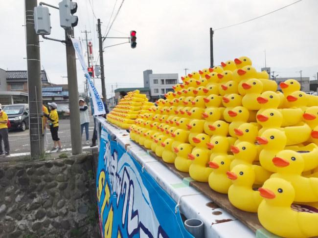 木瓜川ダックレース&クリーンアップ作戦