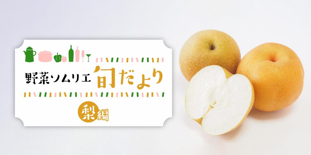 すっきりとした甘さが人気! みずみずしい福井の梨を味わおう♪ 【野菜ソムリエ旬だより】