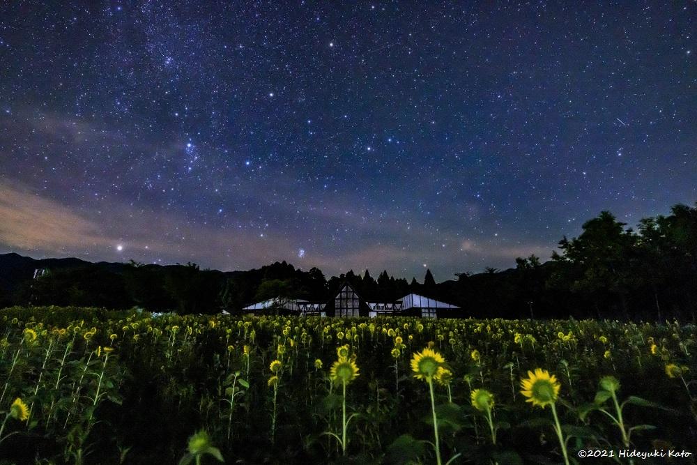 ヒマワリと見上げる満天星! 大野市のスターランドさかだにで星を見てきました!【ふくい星空写真館】